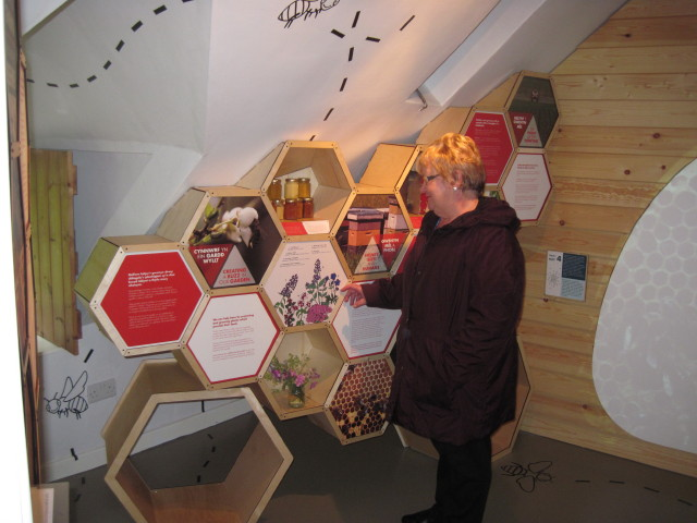 beekeeping-exhibition
